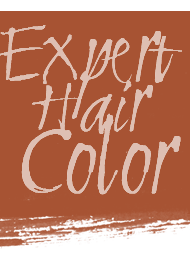 Beauty Asylum Expert Hair Color